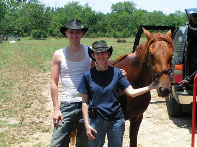 paso fino mare is trail riding horse